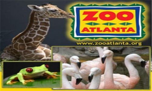 Zoo Atlanta Coupon & Deal