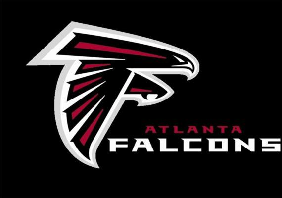 Atlanta Falcons 2013 NFL Season