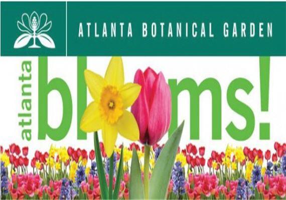 Atlanta Blooms